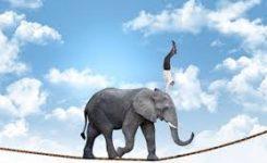[MANAGEMENT] Agilité, flexibilité, assertivité, réflexivité … Tout comprendre des dernières tendances du management
